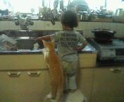 台所が好き?